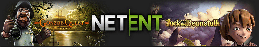 Energy Net Entertainment