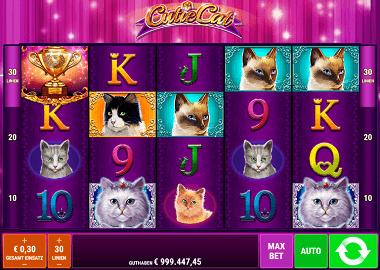 Cutie Cat Online Slot