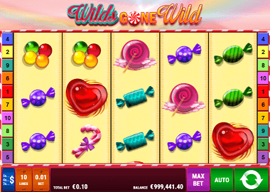 Wilds gone Wild Online Slot