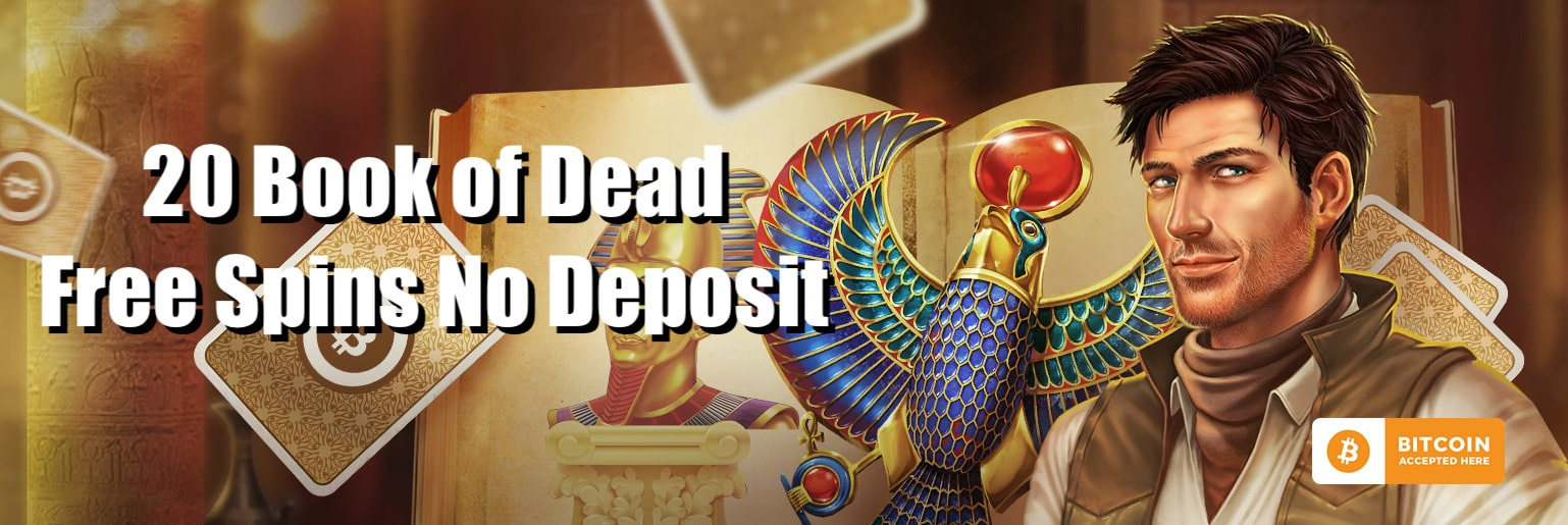 Wild Bluster Book of Dead Free Spins